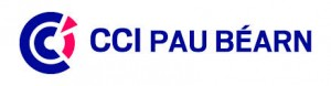CCI Pau bearn